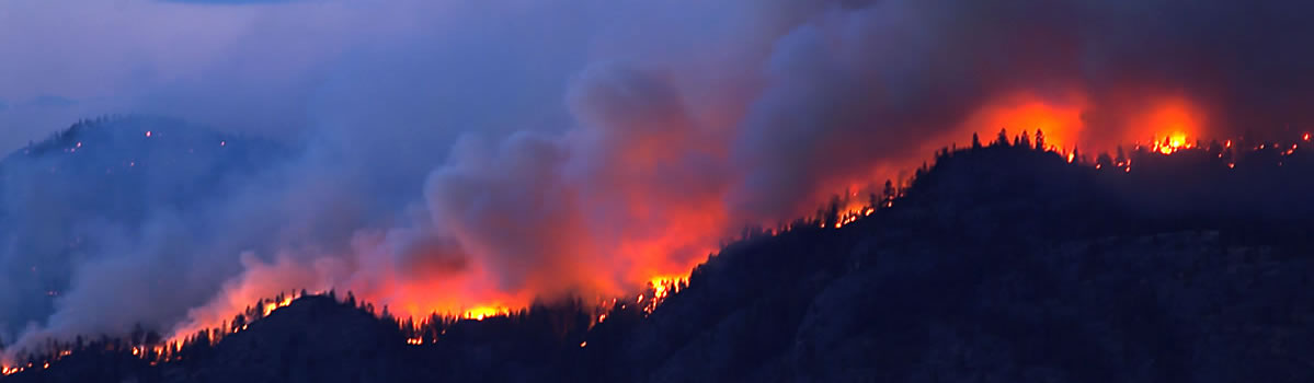 Evaluation Process for reducing Town of Vail Wildfires